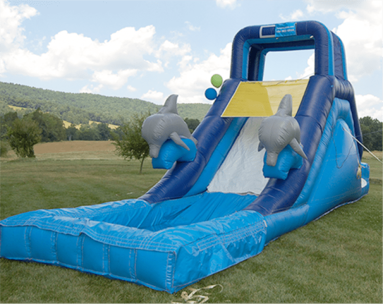 Dolphin Water Slide 2010 T-C3-906111